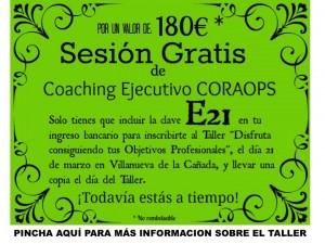 bono-coach-e21